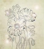 Abstracte bloemenpapaverachtergrond royalty-vrije illustratie