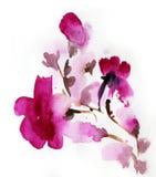 Abstracte bloemenwaterverf Stock Afbeeldingen