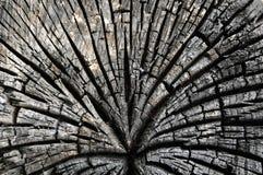 Abstracte brandwond houten achtergrond Royalty-vrije Stock Foto's