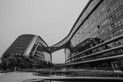 Abstracte close-up zwart-witte foto van het moderne detail van de vormarchitectuur Bionische voorgevel Royalty-vrije Stock Foto's