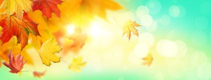 Abstracte de herfstachtergrond stock afbeelding