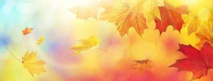 Abstracte de herfstachtergrond royalty-vrije stock foto
