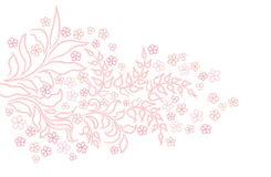 Abstracte de kamilletextuur van de wervelingsbloem Stock Foto