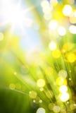 Abstracte de lenteachtergrond Royalty-vrije Stock Foto's