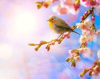 Abstracte de lenteachtergrond Stock Afbeeldingen