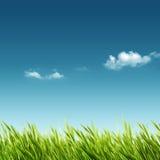 Abstracte de zomer en de lenteachtergronden vector illustratie