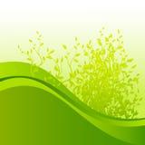 Abstracte de zomerheuvel met bladeren Stock Illustratie