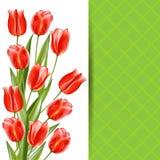 Abstracte decoratie, uitnodigingskaart met rood glanzend boeket tul Royalty-vrije Stock Foto