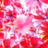Abstracte decoratieve achtergrond met bloemen Royalty-vrije Stock Afbeeldingen