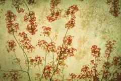 Abstracte die retro achtergrond van Flam-boyant of pauwbloemen door grungetextuur worden gefiltreerd, Chinese stijl royalty-vrije stock afbeelding