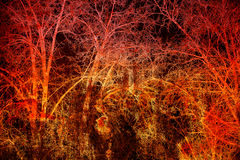 Abstracte donkere achtergrond Boomtakken op een zwarte en rode achtergrond Stock Foto