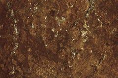 Abstracte donkere bruine steenoppervlakte die op een muur, schors of een topografische kaart lijken Stock Afbeelding