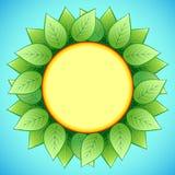 Abstracte ecoachtergrond met modieuze zonnebloem Stock Afbeeldingen