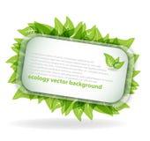 Abstracte ecologieachtergrond Royalty-vrije Illustratie
