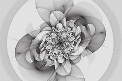 Abstracte fractal Ð haotic motie ¡ Stock Foto