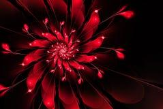 Abstracte fractal bloem, rood op een zwarte achtergrond Stock Afbeeldingen
