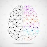 Abstracte geometrische hersenen van linker en juiste hemisfeer stock illustratie