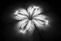 Abstracte gloeiende zwart-wit bloem op zwarte achtergrond Stock Foto's