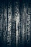 Abstracte grijze textuur Donkere houten uitstekende achtergrond Abstracte achtergrond en textuur voor ontwerpers Oude uitstekende Stock Afbeelding
