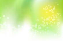 Abstracte groene bloemen de lenteachtergrond Royalty-vrije Stock Afbeeldingen
