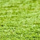 Abstracte groene bokeh Stock Afbeeldingen