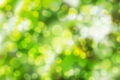 Abstracte groene de lenteachtergrond Stock Afbeeldingen