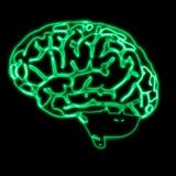 Abstracte groene hersenen stock illustratie