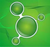 Abstracte groene knoop Stock Fotografie