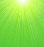 Abstracte Groene Zonnestraalachtergrond Royalty-vrije Stock Afbeelding