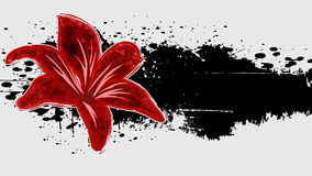 Abstracte grungeachtergrond met rode bloem. Stock Fotografie