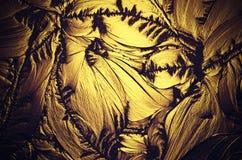 Decoratief glas Stock Afbeeldingen