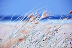 Abstracte het strand oceaanoverzees van de achtergrondconceptendagtocht Royalty-vrije Stock Foto's