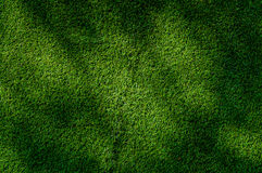 Abstracte hoogste menings groene kleur van kunstmatige grasachtergrond Stock Foto