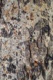 Abstracte houten textuurachtergrond Royalty-vrije Stock Afbeelding