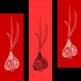Abstracte illustratie met knoflook Stock Foto
