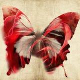 Abstracte illustratie met vlinder Stock Fotografie