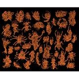 Abstracte insecteninzameling Royalty-vrije Stock Afbeeldingen