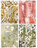 Abstracte Kleurenachtergronden Royalty-vrije Stock Foto