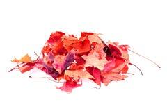 Abstracte kleurenbladeren Stock Foto's