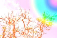 Abstracte kleurrijke achtergrond, boom in de tuin op hemelachtergrond Stock Afbeeldingen