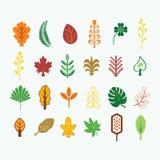 Abstracte kleurrijke daling en tropische die bladerenpictogrammen op lichte achtergrond wordt geplaatst stock illustratie