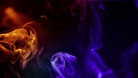 Abstracte kleurrijke rook op zwarte achtergrond, stock videobeelden