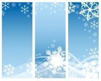 Abstracte krommen & sneeuwvlokken Stock Afbeeldingen