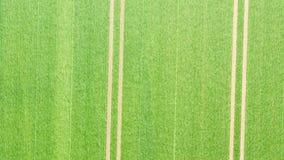Abstracte luchtfoto van twee parallelle voren royalty-vrije stock foto's