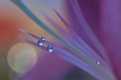Abstracte macrofoto met waterdalingen Stock Afbeeldingen