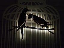 Abstracte modelvogels en kooi stock afbeeldingen