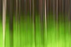 Abstracte motie bosachtergrond stock afbeelding