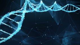 Abstracte Motieachtergrond - Digitale Binaire de molecule4k Lijn van DNA van de Veelhoekvlecht stock video