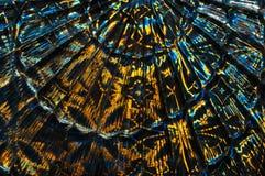 Abstracte multicolored glasachtergrond Een patroon in de vorm van een ventilator Stock Afbeelding