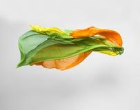 Abstracte multicolored stof in motie Royalty-vrije Stock Afbeelding